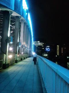 【発見】2009年07月31日散歩
