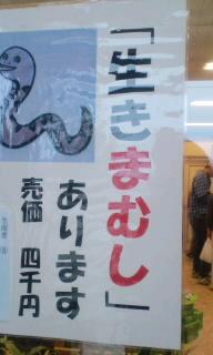 【旅】朝霧高原道の駅