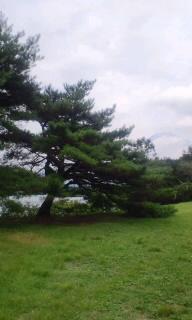 【旅】田貫湖