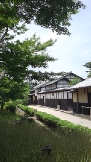 【ゲリラ】熱海のMOA美術館